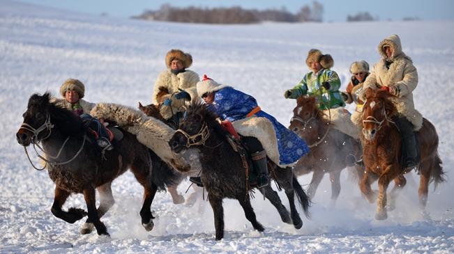 駿馬駱駝扮靚冬日草原