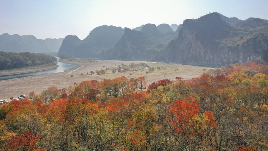 桂林網紅楓葉打卡點,你知道幾個?